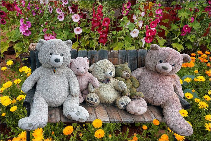 cute stuffed bears
